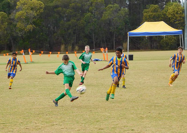 Beaudesert Soccer Club-Committee Volunteers